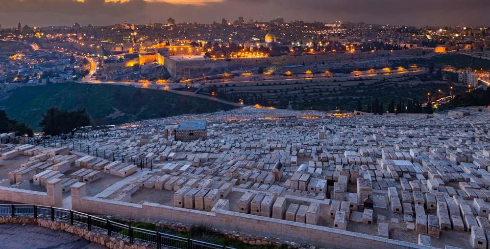 Progetto Palestina - Rete Radié Resch